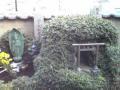 神楽坂/安養寺
